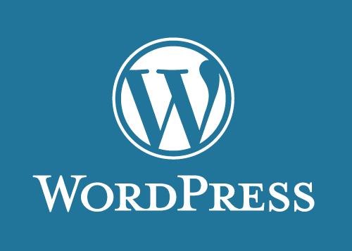 WordPress – Innovatief of niet?
